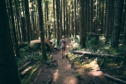 Hiking in the woods